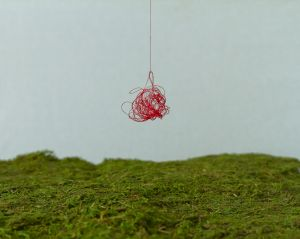 Tangled Diptych 1 (String)