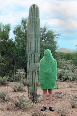 c42-cactuscozie.jpg